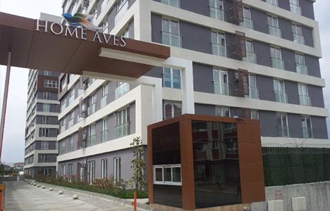 Home Aves Projesi